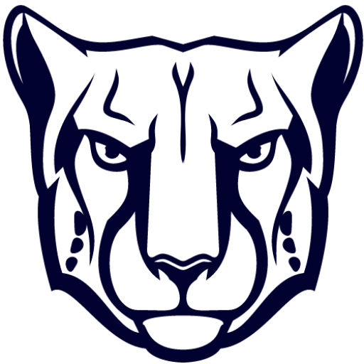 Panthersolutions